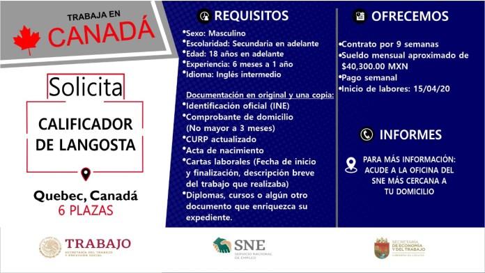 Ofertará Secretaría de Economía y del Trabajo más de mil vacantes WhatsApp Image 2019 10 13 at 2.16.16 PM