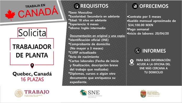 Ofertará Secretaría de Economía y del Trabajo más de mil vacantes WhatsApp Image 2019 10 13 at 2.16.17 PM 2