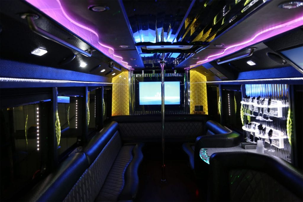 2010 Limo Bus Party Animal Limo Party Bus