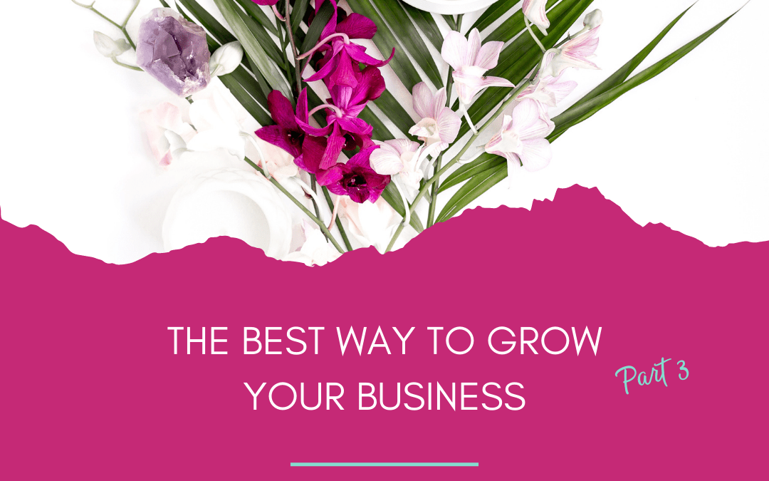 The best way to grow your business – Part 3