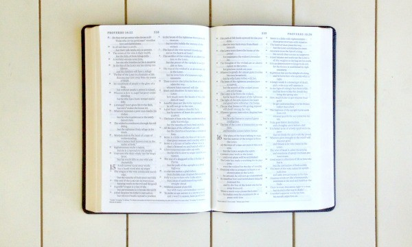 HowtoReadtheBible1