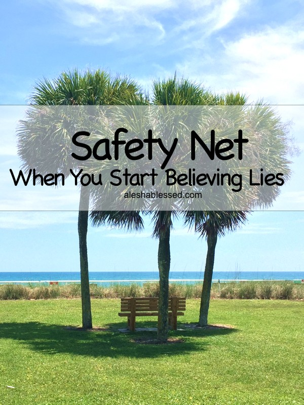 SafetyNet2