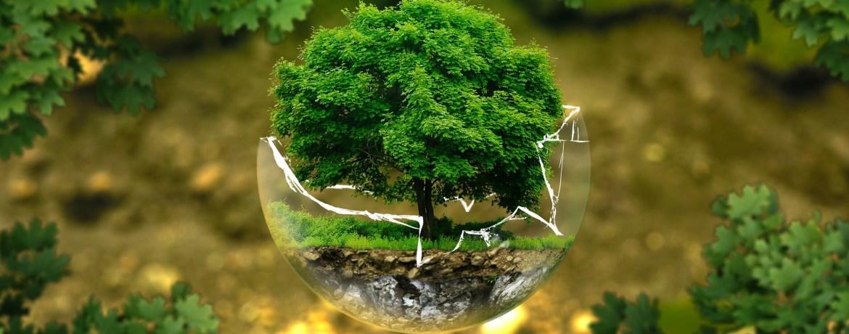 Fondi europei e norme ambientali: il paradosso italiano