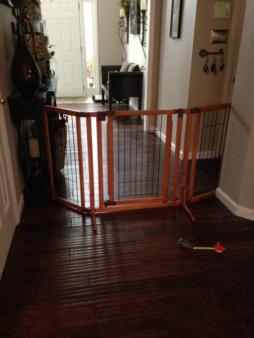 baby_gate