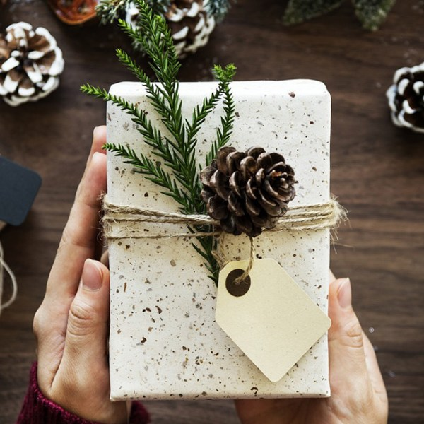 2017 holiday gift guide best gifts