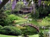 come-creare-un-giardino-giapponese_N4