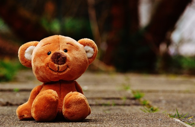 bear-1272762