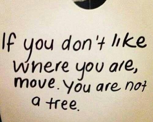 cambiamento-motivazione-non-sei-un-alberto