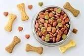 crocchette per cani e biscotti