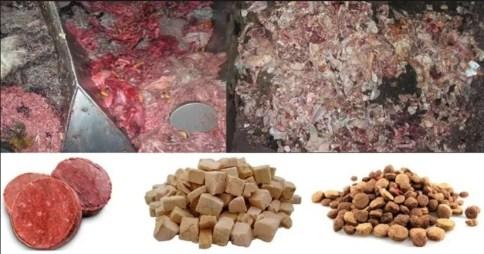 carne denaturata può essere usata per le crocchette per cani