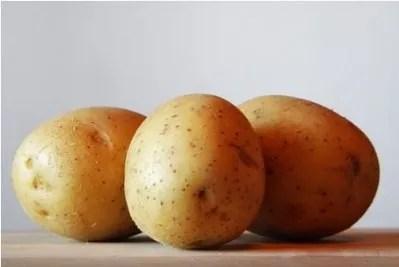 i cani possono mangiare le patate? Si, ma...