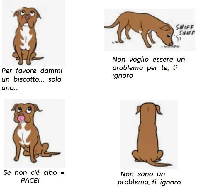 cane comunicazione con gli atteggiamenti