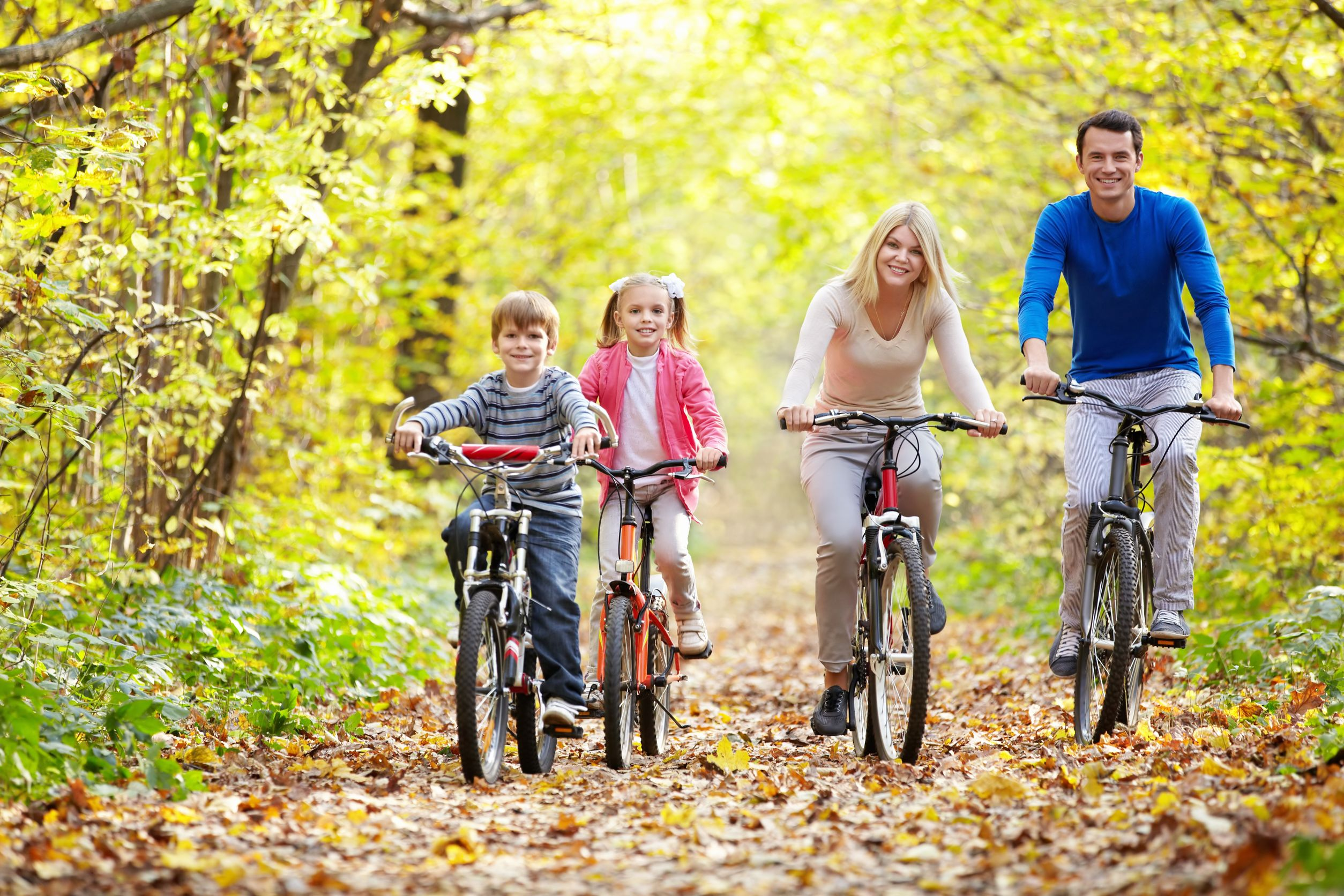 11989474 – family on bikes in the park in autumn