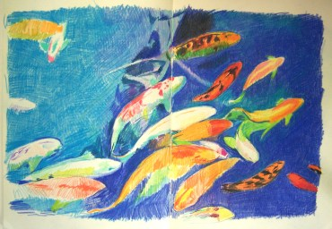 drawing-notebook-page-of-koi-aug-2010