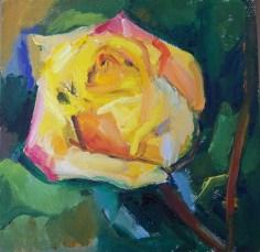 rose 2a