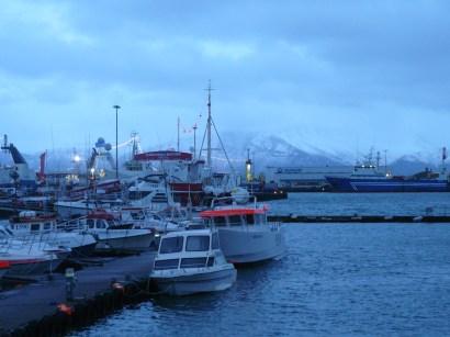 reykjavik harbour