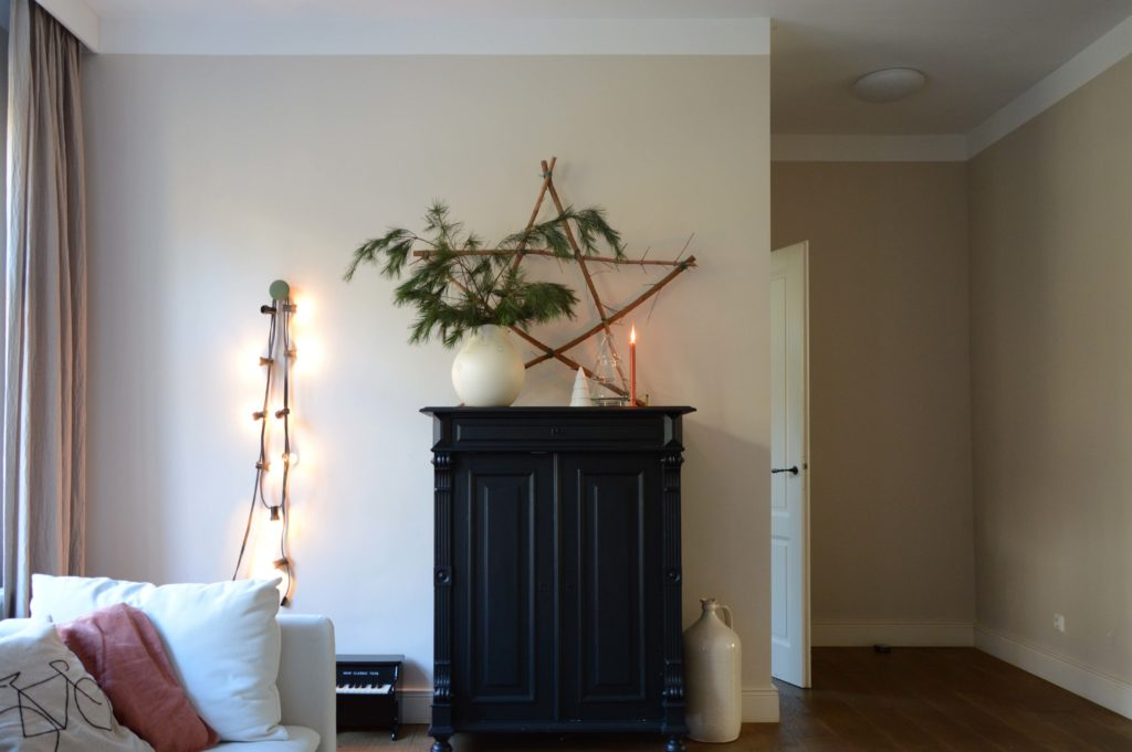 Decoratietakken van de Pinus Wallichiana (ofwel Tranenden)