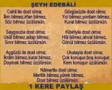 üzülürsün Alevi Bektaşi Kızılbaş Pir Sultan Devrimci Aleviler Birliği DAB