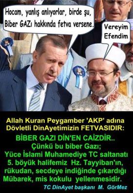Devrimci Aleviler Birliği DAB Alevi Kızılbaş Bektaşi pir sultan cem hz Ali 12 imam semah Feramuz Şah Acar 10201477652731198