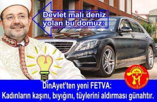 Devrimci Aleviler Birliği DAB Alevi Kızılbaş Bektaşi pir sultan cem hz Ali 12 imam semah Feramuz Şah Acar dib got gili dinayet