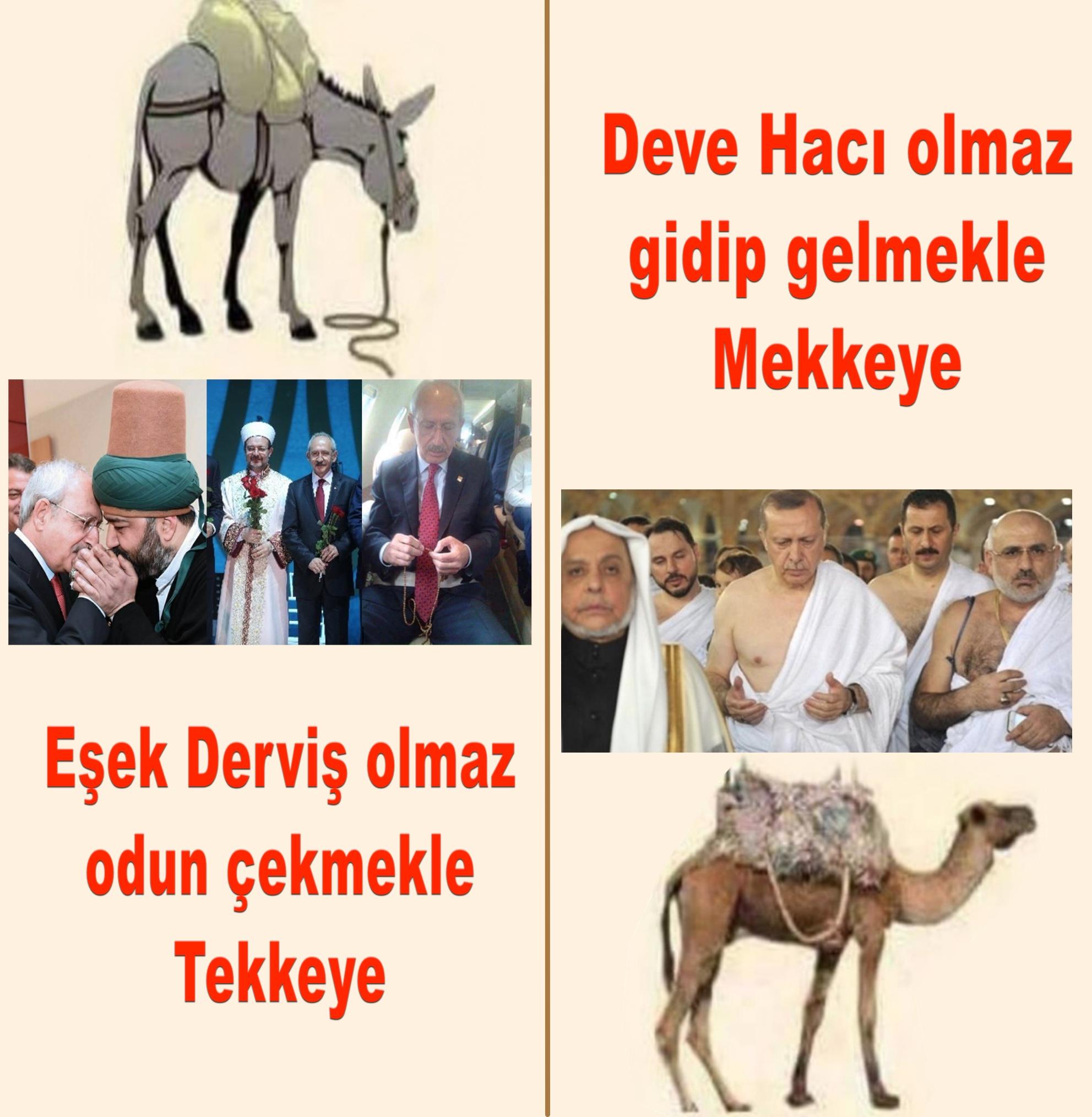 Devrimci Aleviler Birliği DAB Alevi Kızılbaş Bektaşi pir sultan cem hz Ali 12 imam semah Feramuz Şah Acar esek deve kemal erdogan 2 copy