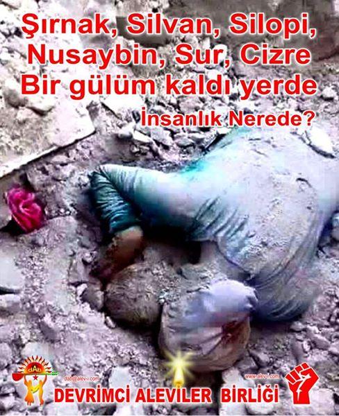 Devrimci Aleviler Birliği DAB Alevi Kızılbaş Bektaşi pir sultan cem hz Ali 12 imam semah Feramuz Şah Acar photo_627908904024169