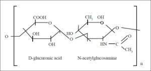 Properties Of Polysaccharides   ALevel Biology Revision Notes