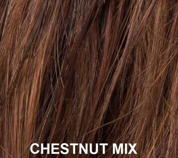 Ellen Wille chestnut mix