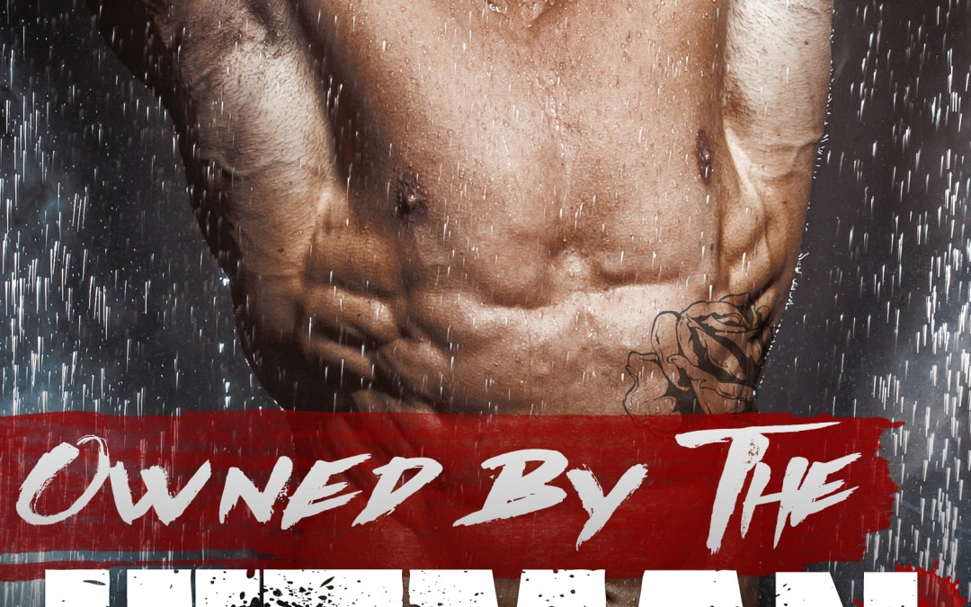 Cover Reveal: Owned by the Hitman