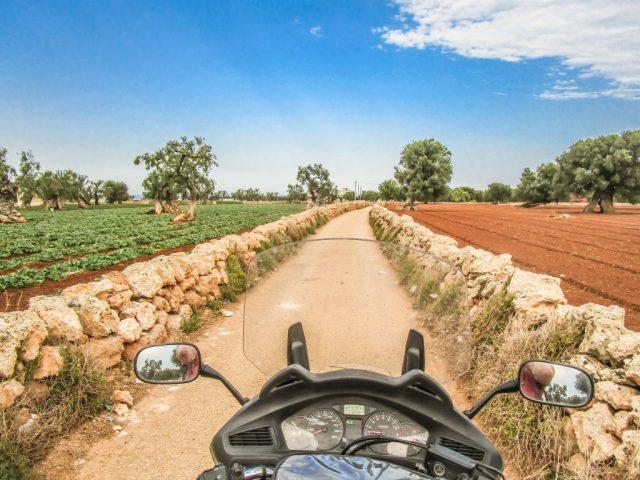 Mit dem Motorrad in den Olivenhainen Apuliens. Foto: Alexander Baumbach