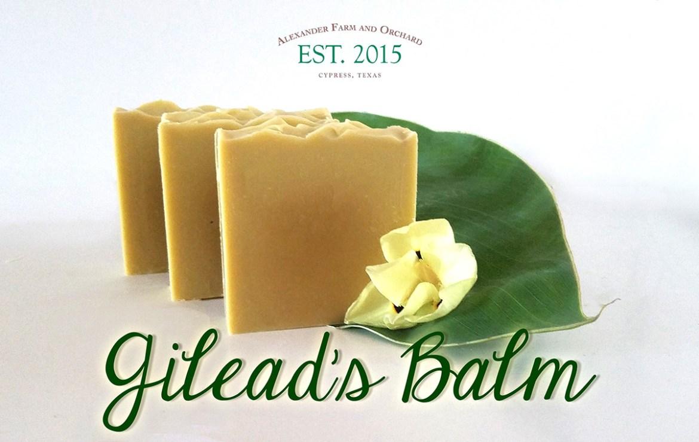Gilead's Balm