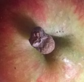 apples (12)