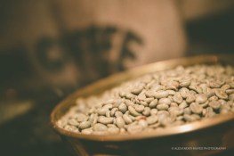 Good Cafe Guide 2014-3270