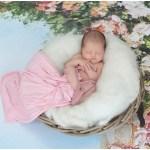 photo naissance sarthe