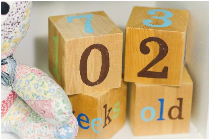 alexandra-michelle-photography-milestone-2-newborn-deihr-2