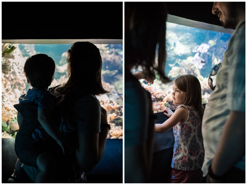 Alexandra Michelle Photography - Summer 2019 - Davidson Visit - Baltimore National Aquarium-9