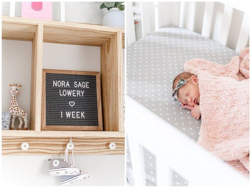 Alexandra Michelle Photography - Fall 2019 - Falls Church - Newborn Portraits - Lowery SP-4