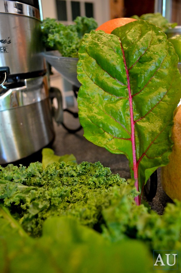 Turnip greens, Kale, and Swiss Chard