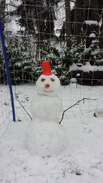 Schneemann im Tor.