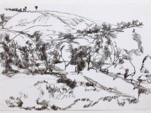 Drawing by Sallie Moffat 'Locus 4 '