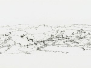 Drawing by Sallie Moffat 'Fowlers Gap triptych (centre)
