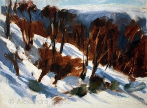 Australian Landscape Paintings 'Burnt Snowgums' Alexandra Sasse 22 x 30cm