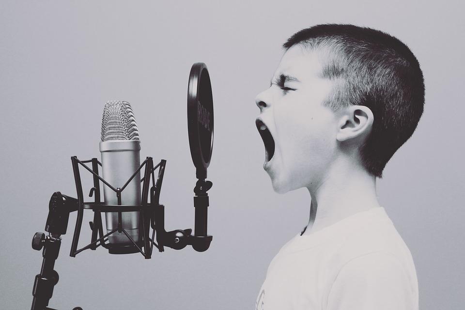 formation audio en neuroscience à