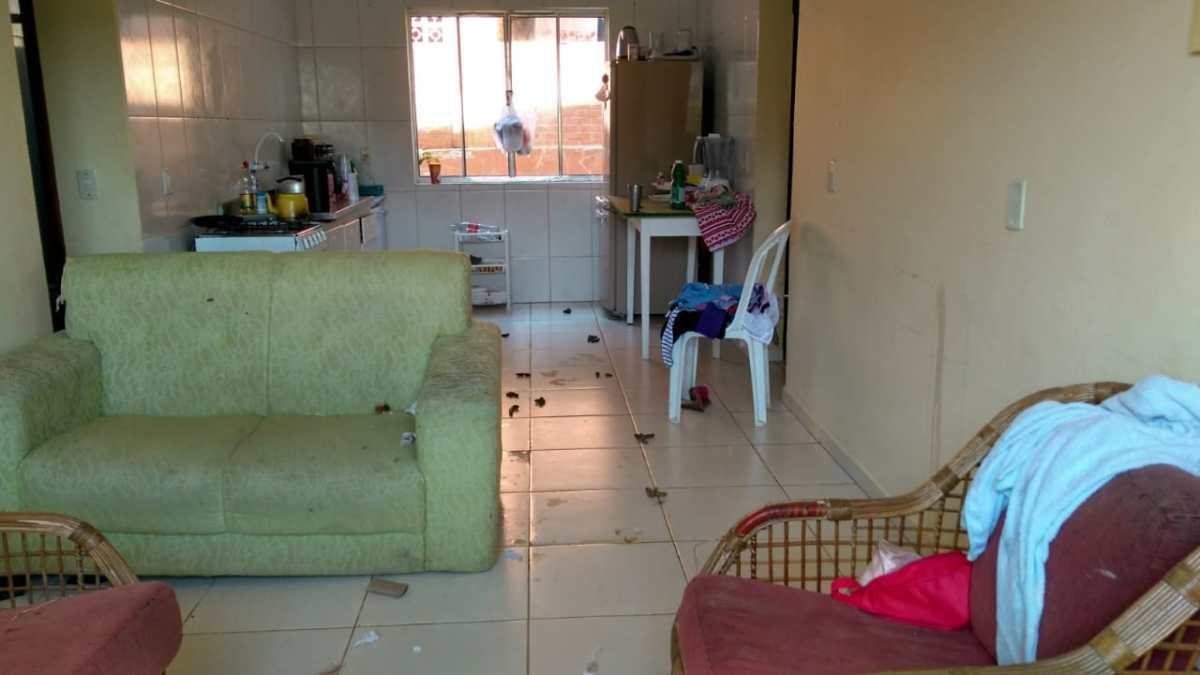 Cães eram mantidos trancados em apartamento por quase uma semana
