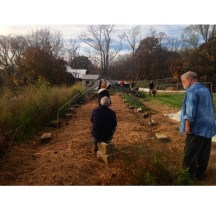 Ed and other volunteers begin to build the low tunnel hoop house.