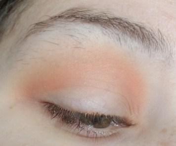 everyday matte makeup eye