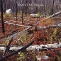 timeless-pulse-trio