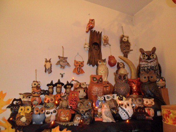 H owls1