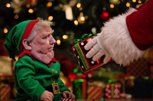 TMC donald elf