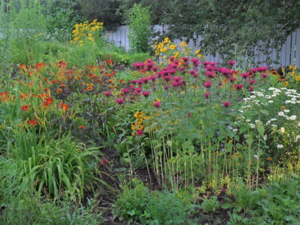 july garden76